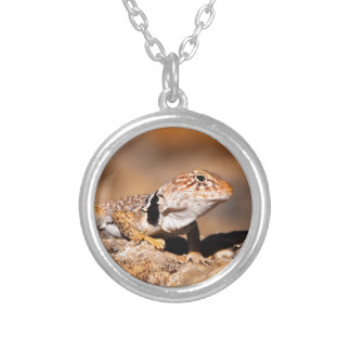 Great Basin Collared Lizard - Burr Trail - Utah Silver Plated Necklace