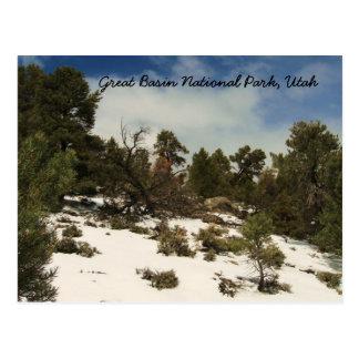 Great Basin National Park, Utah Postcard