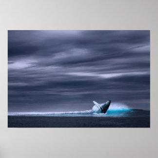 Great Big Ocean & Whale | Poster Print