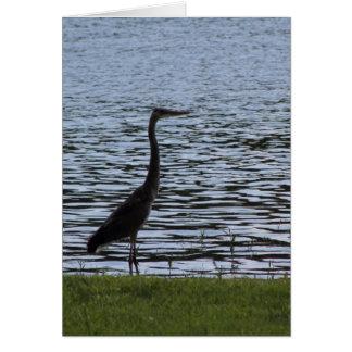 Great Blue Heron and Creek Greeting Card