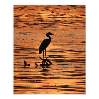 Great Blue Heron at Sunset Photo Print