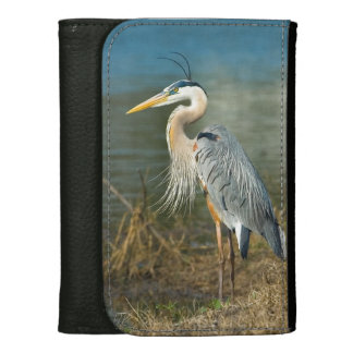 Great Blue Heron at the Pond Wallets