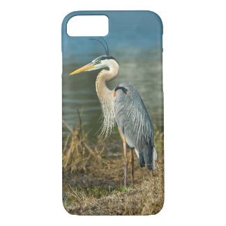 Great Blue Heron Bird at the Pond iPhone 7 Case