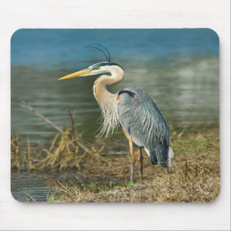 Great Blue Heron Bird Mousepad