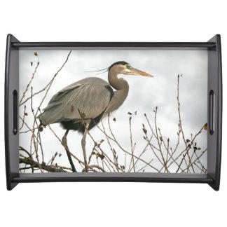 Great Blue Heron Bird Wildlife Serving Tray