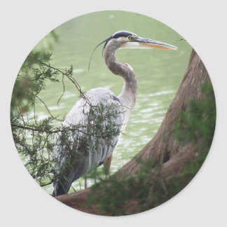 Great Blue Heron By The Tree Classic Round Sticker