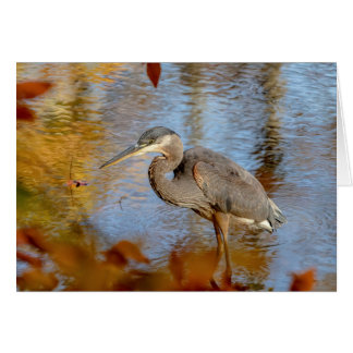 Great Blue Heron framed with fall foliage Card