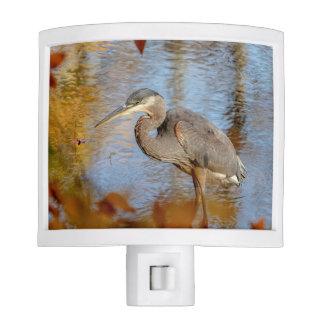 Great Blue Heron framed with fall foliage Nite Light
