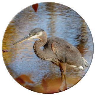 Great Blue Heron framed with fall foliage Plate