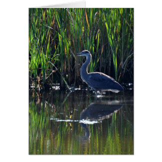 Great Blue Heron in the Reeds Greeting Card