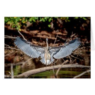 Great Blue Heron on a log Card