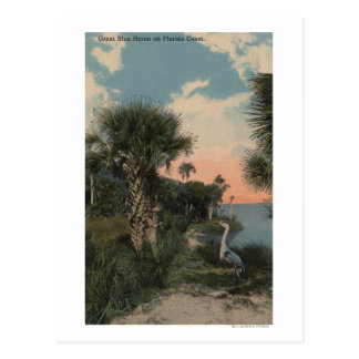 Great Blue Heron on Florida Coast Beach Postcard