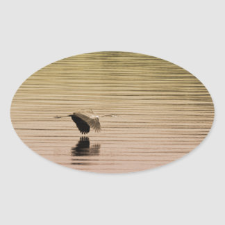 Great Blue Heron on Gradient Background Oval Sticker