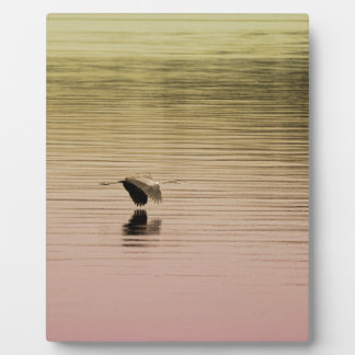 Great Blue Heron on Gradient Background Plaque