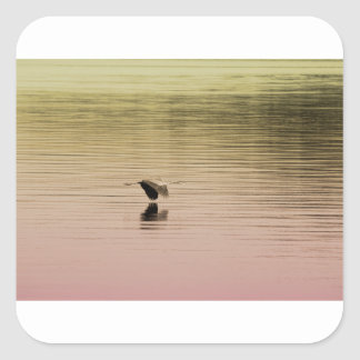 Great Blue Heron on Gradient Background Square Sticker