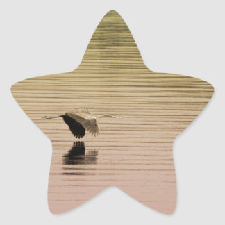 Great Blue Heron on Gradient Background Star Sticker