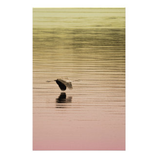 Great Blue Heron on Gradient Background Stationery