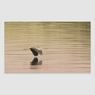 Great Blue Heron on Gradient Background Sticker