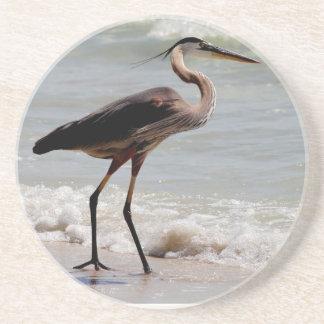 Great Blue Heron on the beach Coaster
