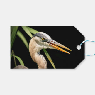 Great Blue Heron Pack Of Gift Tags