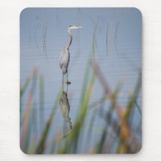 Great Blue Heron, Reflecting -- Mouse Pad