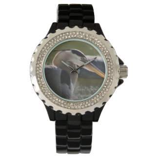 Great Blue Heron Watch