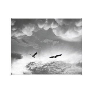 Great Blue Herons After The Storm Stretched Canvas Print