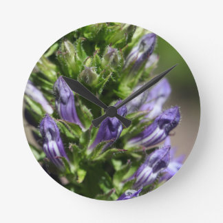 Great Blue Lobelia (Lobelia siphilitica) Wall Clocks