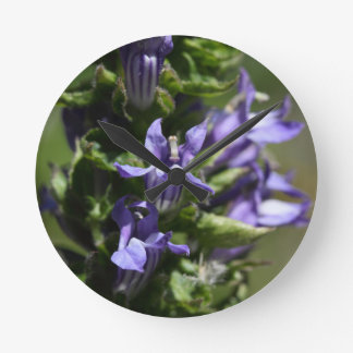 Great Blue Lobelia (Lobelia siphilitica) Wallclock