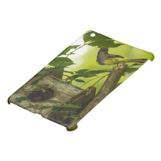 Great Crested Flycatcher iPad Mini Covers