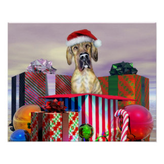 Great Dane Christmas Surprise Brindle UC Poster