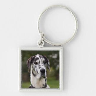 Great Dane dog portrait keychain, gift idea Keychain