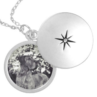 Great dane image silver plated necklace
