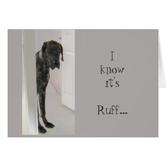 Great Dane Pet Dog It's Been Ruff I'm here for you Card