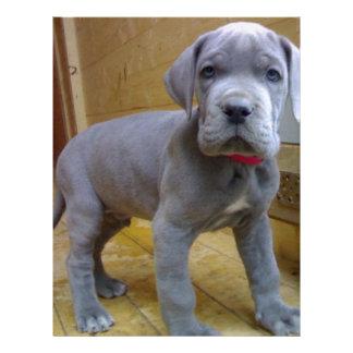 great dane puppy blue customized letterhead