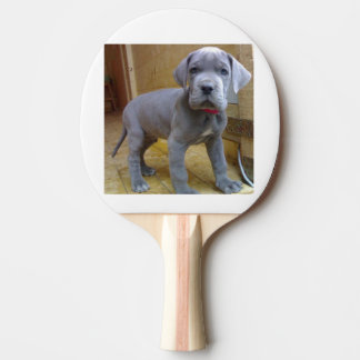 great dane puppy blue Ping-Pong paddle