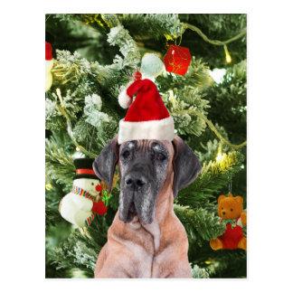 Great Dane w Christmas Tree Gift Boxes Santa Hat Postcard