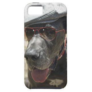Great Dane wearing hat and sunglasses Case For The iPhone 5