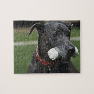 Great Dane with bone Jigsaw Puzzle