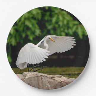 Great Egret 9 Inch Paper Plate