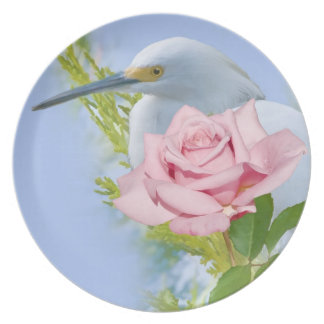 Great Egret and a Rose Plate