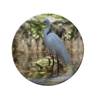 Great Egret Decorative Plate by Julie Everhart