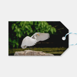 Great Egret Gift Tags