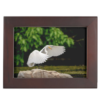 Great Egret Keepsake Box