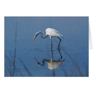 Great Egret Note Card