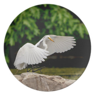 Great Egret Party Plates
