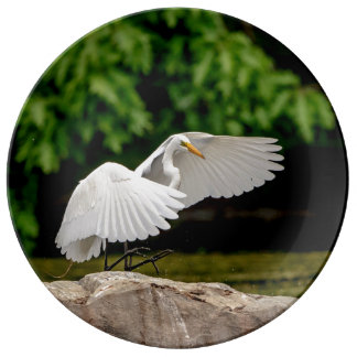 Great Egret Porcelain Plate