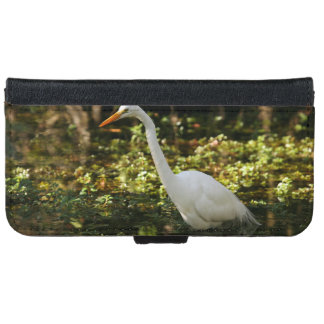 Great Egret Wading in Everglades iPhone 6 Wallet Case