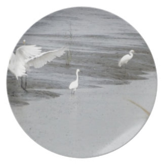 Great Egrets in a swamp Plate