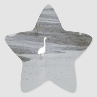 Great Egrets in a swamp Star Sticker